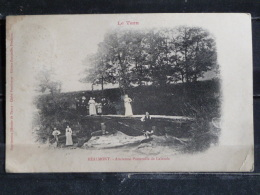 Z26 - 81 - Realmont - Ancienne Passerelle De Lalande -  1913 - Realmont
