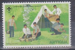 1977 Antigua - Scautismo - Antigua E Barbuda (1981-...)