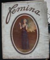 Revue FEMINA N°324 Du 15 Juillet 1914 COLGATE AUTRICHE VACANCES ESTISSAC DRAGS COATCHIES FEMINISME O'DOYE BEARN LAUSNAY - Books, Magazines, Comics