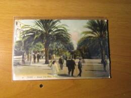 CARTOLINA TUNIS   AVENUE JULES  FERRY   - D 2894 - Tunisia