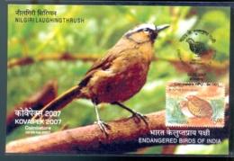 ENDANGERED BIRDS OF INDIA- NILGIRI LAUGHING THRUSH - MAXIMUM CARD-INDIA-2007-MC-99 - Climbing Birds