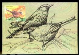 ENDANGERED BIRDS OF INDIA- NILGIRI LAUGHING THRUSH - MAXIMUM CARD-INDIA-2006-MC-99 - Climbing Birds