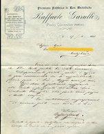 61 PORTO CIVITANOVA 1908 - RAFFAELE GARULLI , PREMIATA FABBRICA DI RETI METALLICHE , LETTRA INTESTATA - Italia