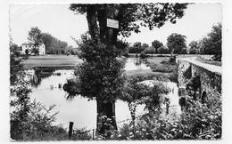 (RECTO / VERSO) LA POMMERAIE EN 1960 - LES BORDS DE LA SEVRE - CACHET HEXAGONAL - FORMAT CPA VOYAGEE - France