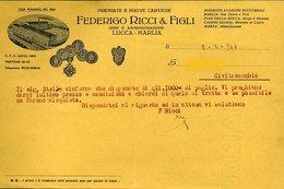 72 MARLIA 1941, CARTIERE FEDERIGO RICCI E FIGLI , SUCCURSALI CANINO MARTA BORGO A MOZZANO, LETTERA INTESTATA - Italien