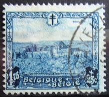 BELGIQUE              N° 313                  OBLITERE - Oblitérés