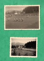 Suisse Crans Montana  Lot De 2 Petites Photos Dressage De Chiens Loups Aout 1954 Format 6cm X 9cm Et 5cm X 6,7cm - Luoghi
