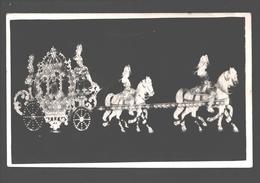 Originele Fotokaart / Photo Card - Te Identificeren / à Identifier / To Identify - Paard En Koets / Carriage - Cartes Postales