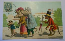 ANIMAUX HUMANISES-Cochons Et Singes - Dressed Animals