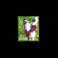 Lettland / Latvia: 'Buntspecht, Dendrocopos Major, 2016' / 'Great Spotted Woodpecker', Mi. 983; Yv. 956; Sc. 936 Oo - Climbing Birds