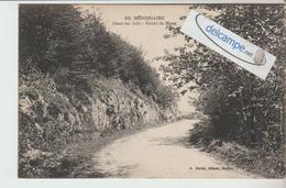 MENESSAIRE : Dans Les Bois,Route De Moux. édit Duciel. - France