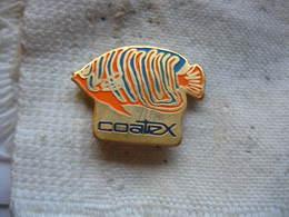 Pin's COATEX, Grand Concepteur/producteur D'additifs De Rhéologie Pour Formulations Et Procédés En Phase Aqueuse Mondial - Animaux