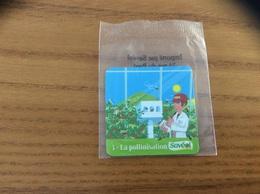 Magnet «Savéol - Nº3 La Pollinisation» (abeille) - Magnets