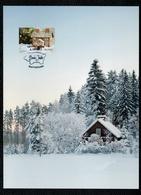 Aland 2017 Christmas Weihnacten Noel Natale Maximum Card 1v FDC VFU - Aland