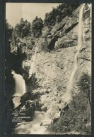 Ansichtskarten  -  Salzkammergut, Hallstatt, Waldbachstrup, - Ansichtskarten