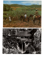 LOT  DE 50 CARTES  POSTALES  SEMI-MODERNE  DIVERS  ETRANGERS  N77 - Postcards