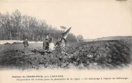 33 - GIRONDE / 332557 - Le Puch - Château Du Grand Puch - Préparation Du Terrain Pour La Plantation De La Vigne - Frankrijk