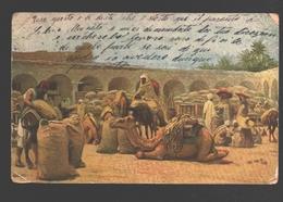 The Golden East - Caravan Encampment - Ed. Tuck - Camel / Kammeel / Chameau - Postcards