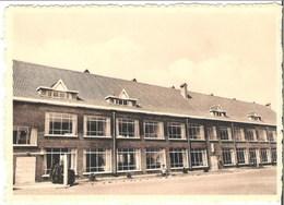 SCHOTEN-DEUZELD - School - Schoten