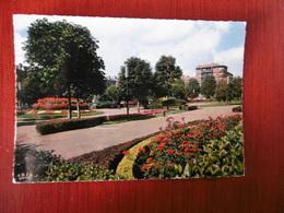 D 42 - Saint Etienne - Jardin Carnot - Saint Etienne