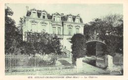 17-AULNAY DE SAINTONGE-LE CHÂTEAU-N°351-B/0191 - Frankreich