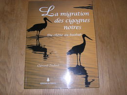 LA MIGRATION DES CIGOGNES NOIRES Du Chêne Au Baobab G Jadoul Nature Cigogne Oiseaux Ornithologie Afrique Europe Oiseau - Dieren