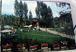 TERME BACEDASCO PIACENZA VB1976   GW4857 - Piacenza