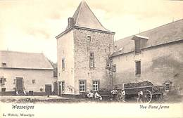 Wasseiges - Vue D'une Ferme (L. Willem, Animée, Attelage, Précurseur) - Wasseiges