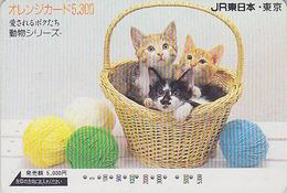 Carte Ancienne Orange Japon - ANIMAL - CHAT Chats & Pelote De Laine - CAT Japan Prepaid JR Card - KATZE - GATO - 4722 - Gatos