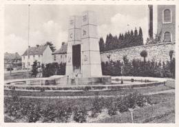 """PLOMBIERE - MONTZEN """"Monument Aux Morts  """"  Voir Scans - Blieberg"""