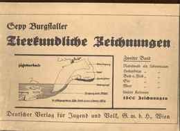 TIERKUNDLICHE ZEICHNUNGEN Von Sepp Burgstaller, Ausgabe 1941 - Animals