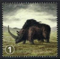 Belgium 2018 MNH, Prehistoric Animals, Coelodonta, Extinct Genus Of Rhinoceros - Timbres