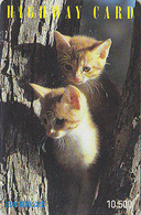 Carte Prépayée Japon - ANIMAL - CHAT Chats - CAT Cats Japan Prepaid Card - KATZE - GATTO - HW 4743 - Gatos