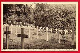 Signeulx- Baranzy. Cimetière Où Reposent Près De 800 Soldats Français Morts Durant Les Combats Du 22 Août 1914 - Musson