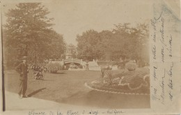 Carte Photo - Dijon (21 Côte D'Or) Square De La Place D'Arcy Circulée 1904 Affranchie Avec 10 Timbres Type Blanc à 1c - Dijon