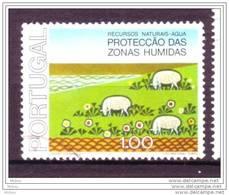 Portugal, Mouton, Lamb, Protection Des Zones Humides, Wetlands Protection - Ferme