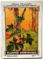 Chromo Image Album Chocolats PETER, CAILLER, KOHLER, NESTLE, Série LXXX N° 7 - PLANTES VENENEUSES - BRYONE - Nestlé