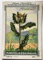 Chromo Image Album Chocolats PETER, CAILLER, KOHLER, NESTLE, Série LXXXI N° 1 PLANTES MEDICINALES - CNICUS CHARDON BENI - Nestlé