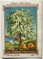 Chromo Image Album Chocolats PETER, CAILLER, KOHLER, NESTLE, Série LXXXVII N° 1 - LES ARBRES FRUITIERS - POIRIER - Nestlé