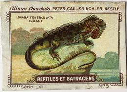 Chromo Image Chocolats PETER CAILLER KOHLER NESTLE Série LXII N° 5 REPTILES ET BATRACIENS - IGUANA TUBERCULATA IGUANE - Nestlé