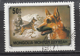 Mongolie, Mongolia, Chien, Dog, Sauvetage En Montagne, Mountain Rescue, Escalade, Alpinisme - Chiens