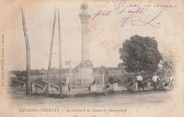 51 - CHAMPAUBERT - La Colonne & Les Canons De Champaubert - Autres Communes