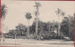 SENEGAL Environs De Dakar Un Coin Du Jardin D' Essai A Hann Edit. MMe Bouchut - Afrika Afrique Africa - Sénégal
