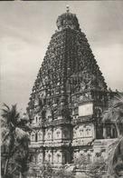 INDIA TANJORE TEMPLE (313) - India