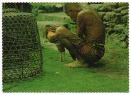 CPM     BALI        UN VIEIL HOMME CARESSE SON COQ     THE OLD MAN IS CARESSING HIS CHAMP COCK - Indonesia