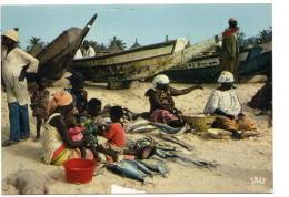 (sénégal - Marchandes De Poissons - Senegal