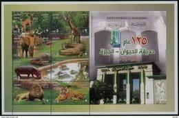 EGYPT / 2016 / GIZA ZOO / ANIMALS-BIRDS / IBEX / GIRAFFE / ELEPHANT / CROCODILE / HIPPOPOTAMUS / PELICAN / LION / TIGER - Ägypten