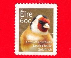 IRLANDA - EIRE - Usato - 2013 - Animali - Uccelli - Cardellino - (Carduelis Carduelis) - 60 - Usati