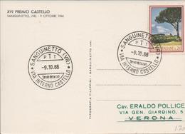 3332    Tarjeta  Postal  Sanguinetto (VR) 1966, Castello - 6. 1946-.. República