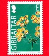 GIBILTERRA - Gibraltar - Usato - Gibilt 2004 - Fiori Selvatici - Finocchio Di Tangeri Gigante - Ferula Tingitana - E - Gibilterra